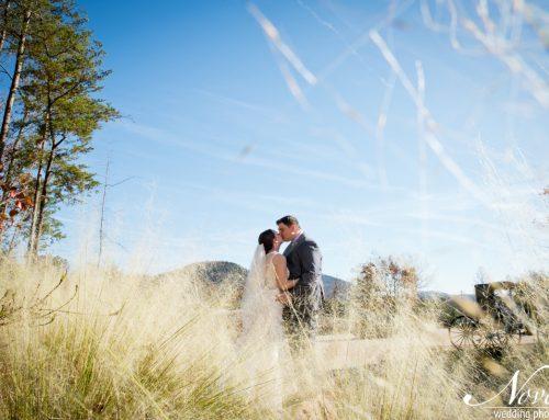Arabella Farm Wedding   Lorey + Debon